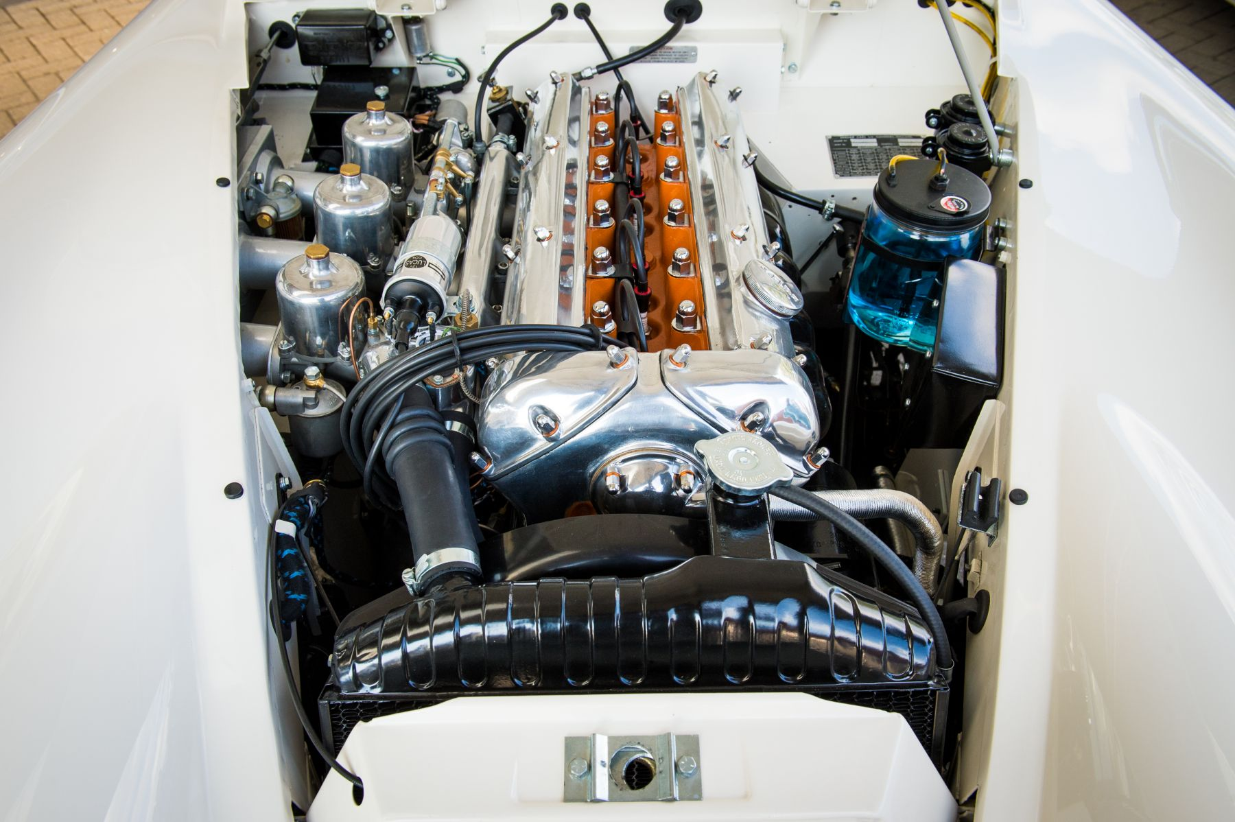 Jaguar XK150 3.4 S OTS 1958 engine